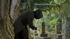 Cemetery Scene (Lucanis Dellamorte Dragon Age 4 Cosplay - Binky Productions)